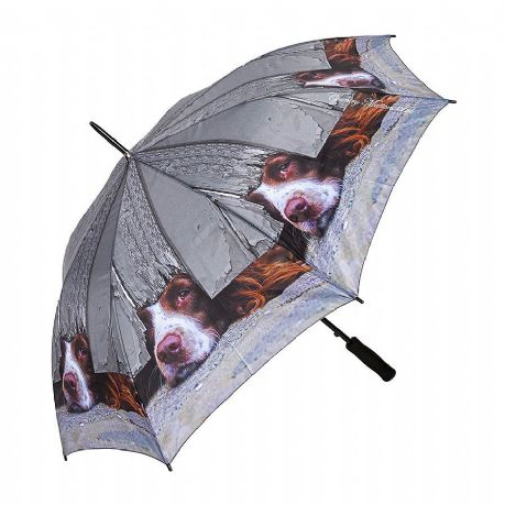 Large Umbrella I Spy Spaniel Design Quality Country Designs by Country Matters